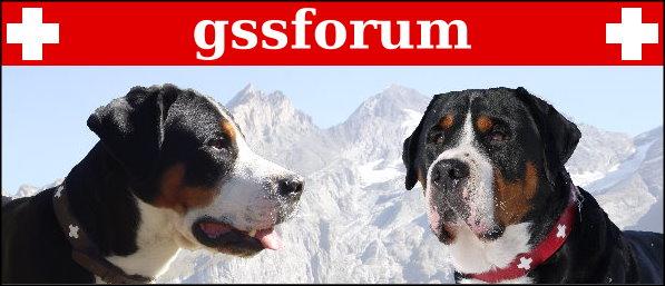 gss-forum