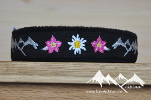 Alpina30_pink.jpg