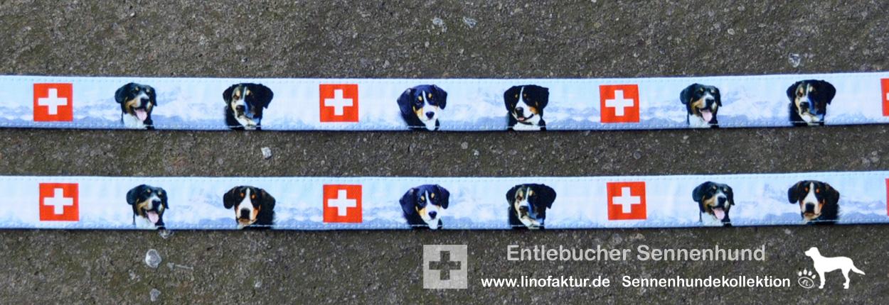 Designs 25mm Breite Entlebucher Sennenhund