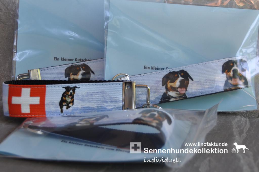 Sennenhundekollektion individuell für Charlys Nachwuchs gibt es Bilder vom Papa
