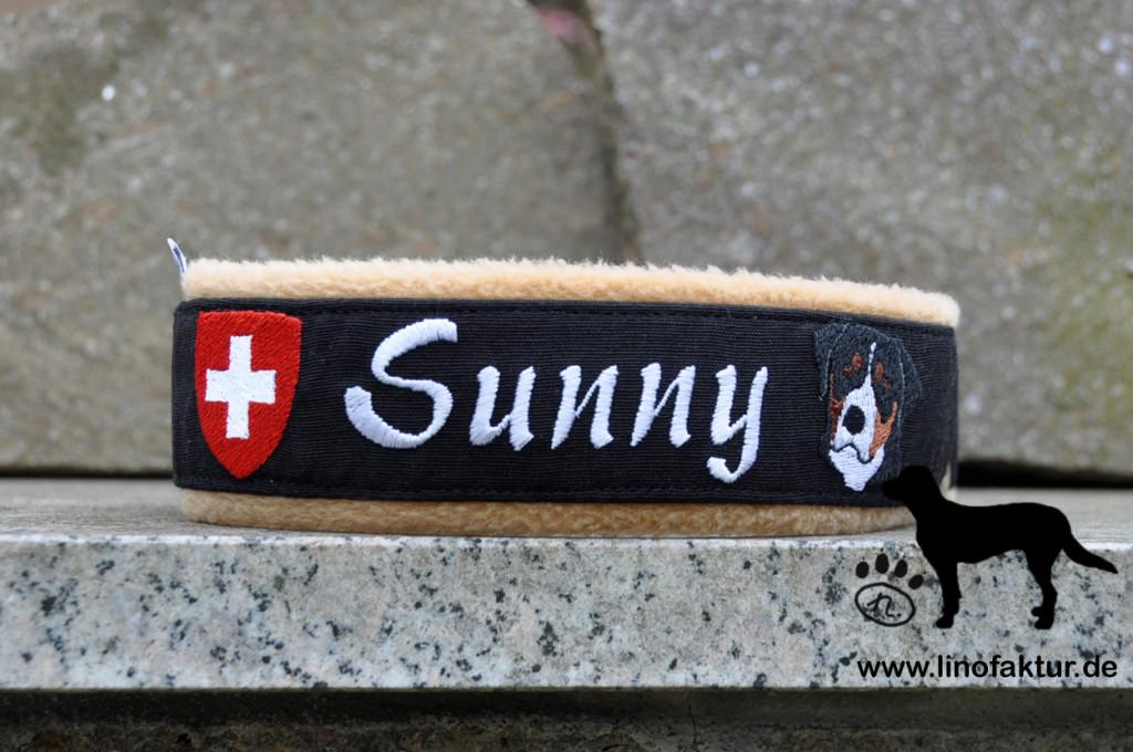 38-Sunny