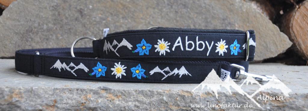 Alpina-Abby.jpg
